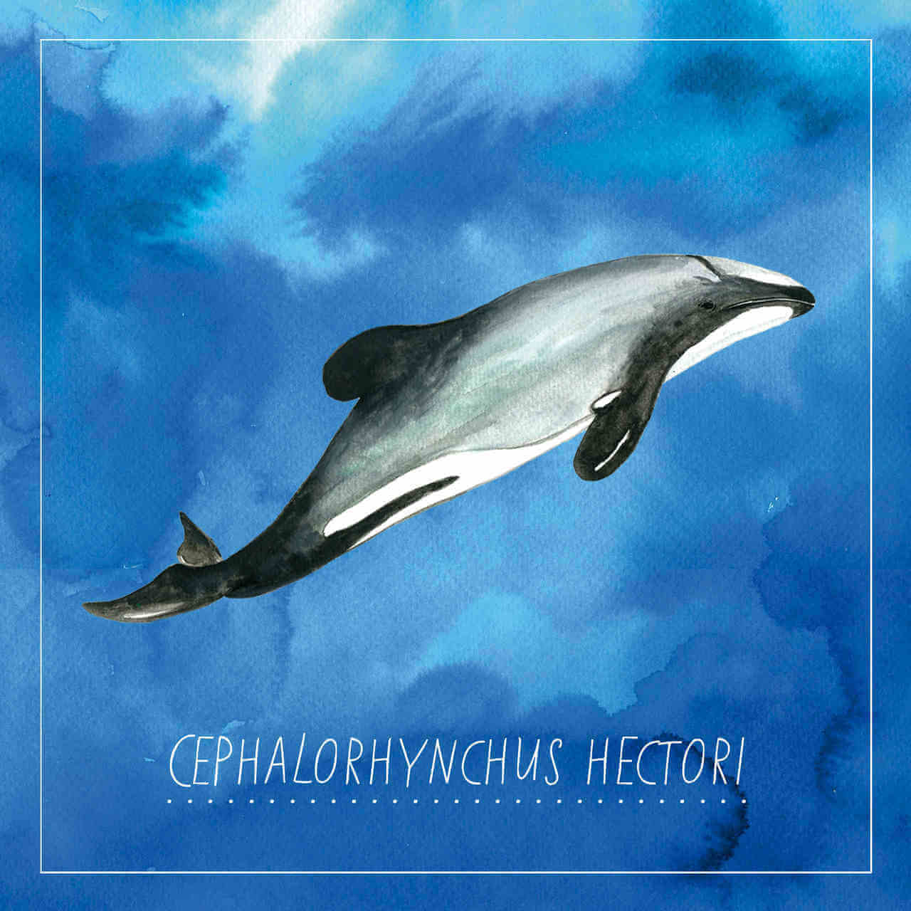 An illustration of a dolphin